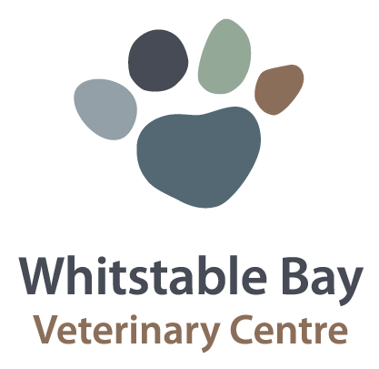 Whitstable Bay Veterinary Centre - Whitstable